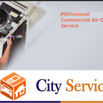City Service Hub |  AC Service In Gurgaon Sohna Road-ac-repair-in-gurgaon.png