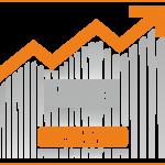 Services-Portfolio Management