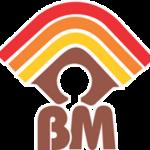 Brainmate logo.png