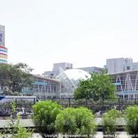 DLF STAR Mall, Just off NH8, Gurgaon