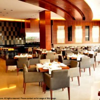 Anya Gurgaon Hotel: The Cafe @ Anya Hotels, Gurgaon