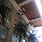 56 Ristorante Italiano, Gurgaon: High Ceiling & Palm Trees