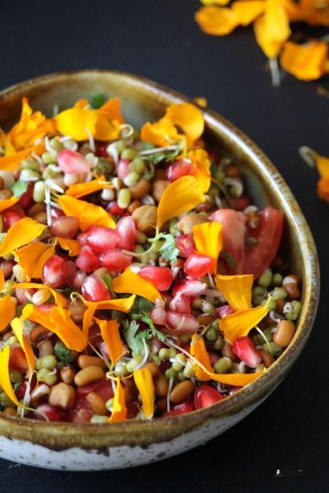 Marigold and Mixed Sprouts Salad